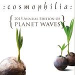 150+Cosmo_coconuts