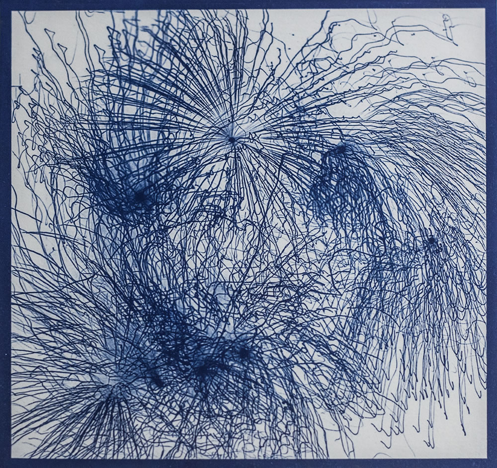Fireworks in Annecy, printed in negative as a cyanotype.  Celebrating Bastille Day, July 14th, the anniversary of the beginning of the French Revolution.