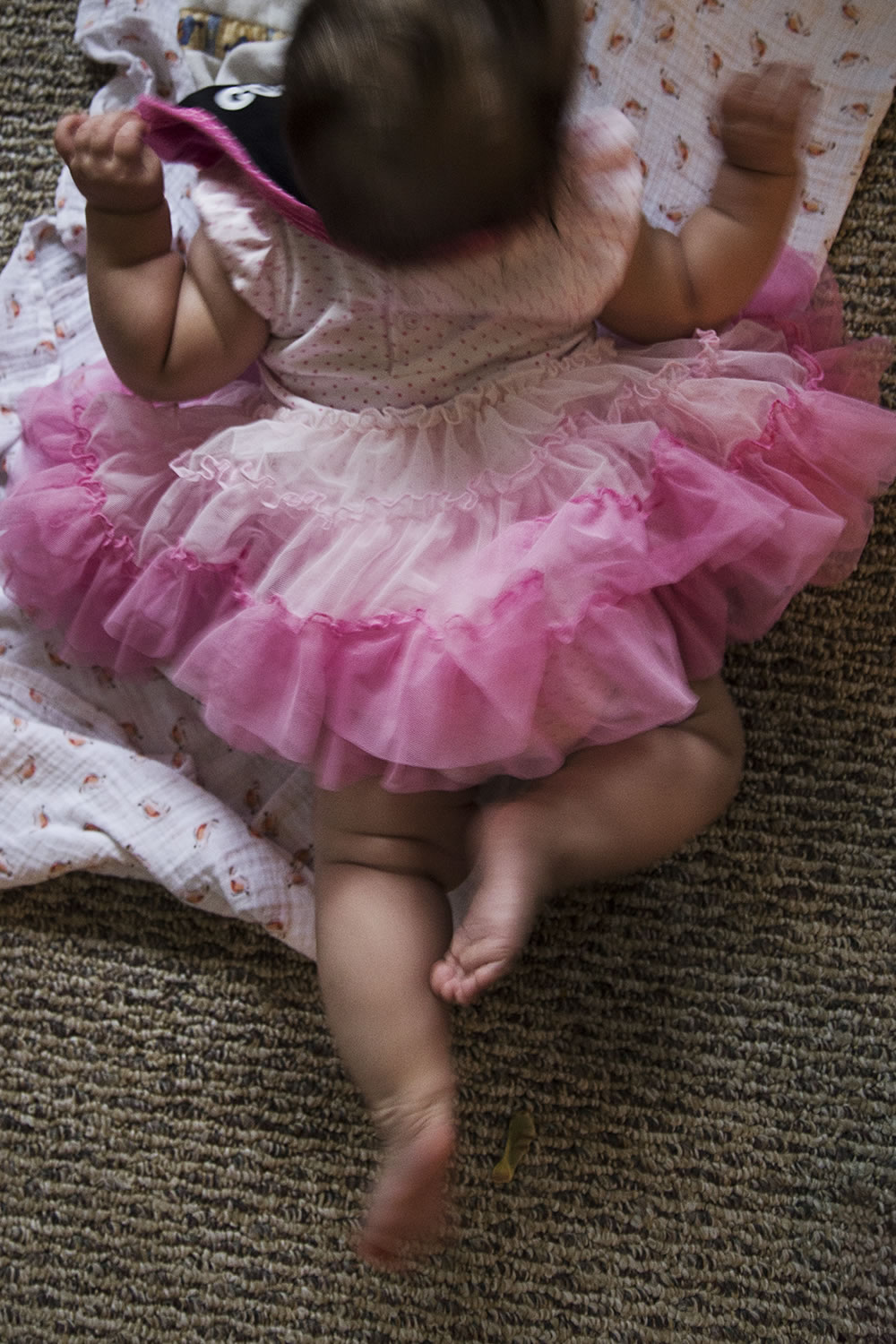 Baby in her first party dress, giving belly dancing a new definition.