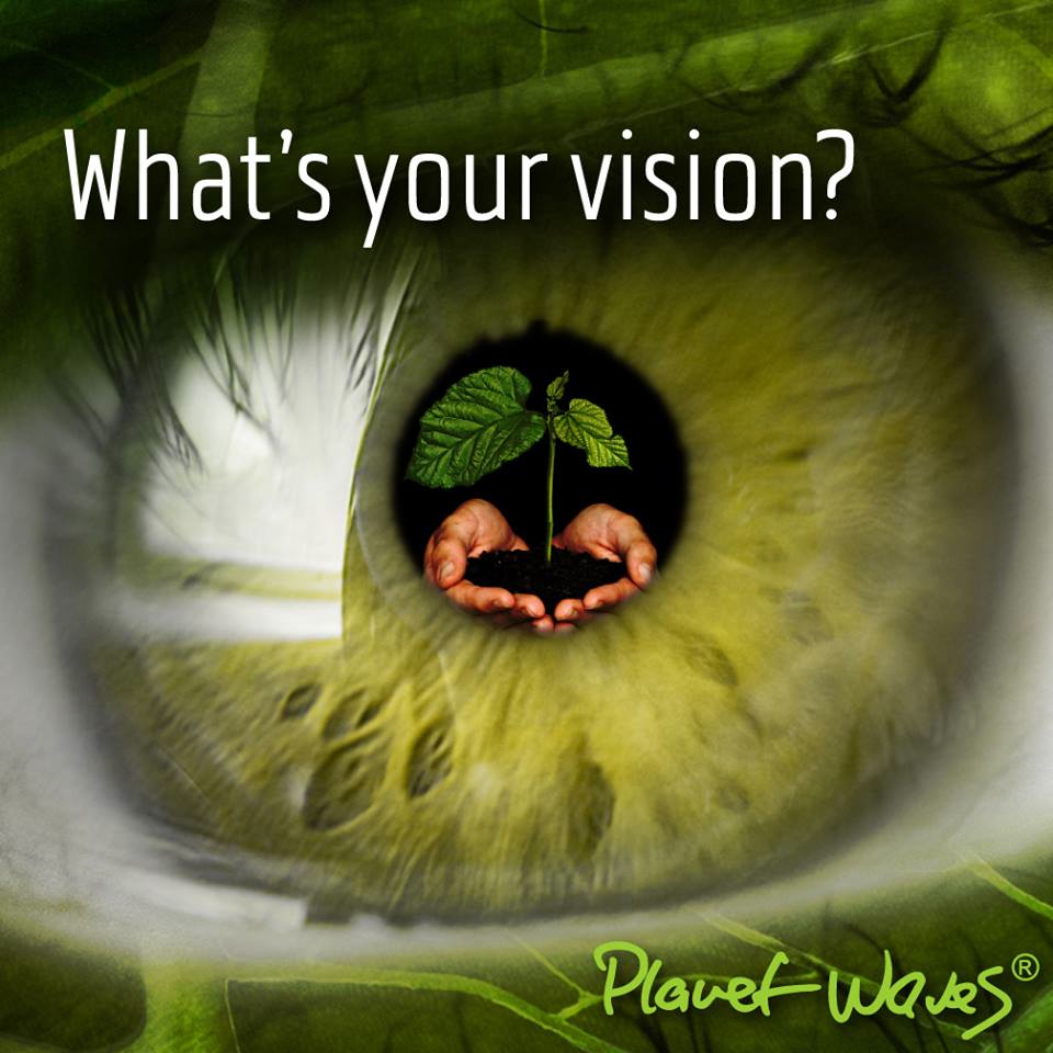 960+VisionQuestEye_green