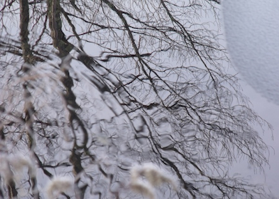 Winter ripples on the Mill Pond. Photo by Amanda Painter.