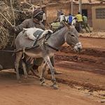 Ouaga_3297thumb