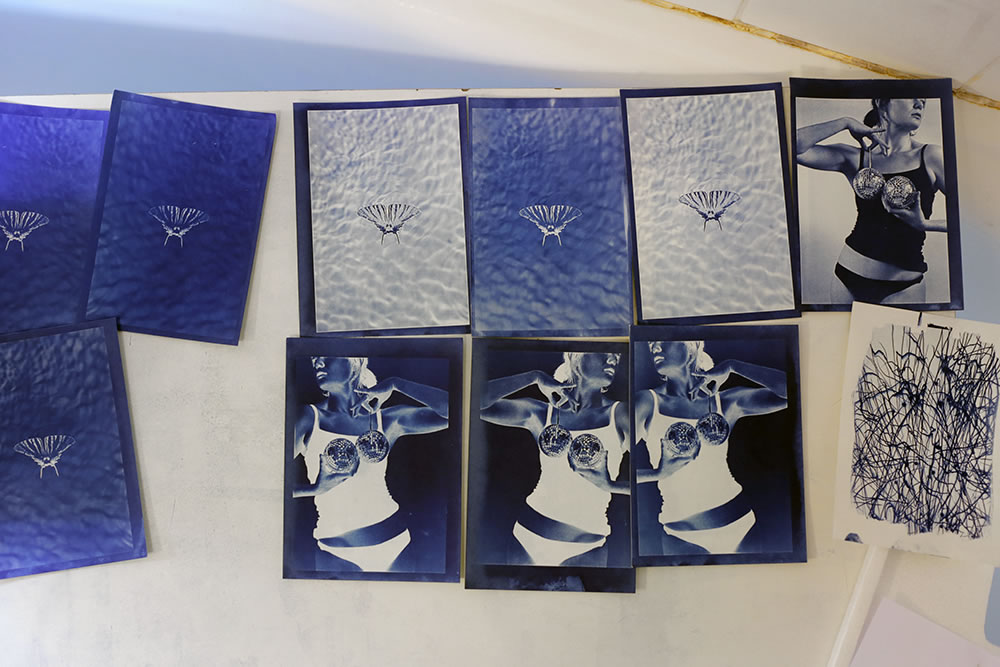 A wall of cyanotypes drying, in honor of the recent birthday of Anna Atkins, the first person to publish a photo book, and perhaps the first woman photographer (it's likely a tie with her friend Constance Talbot).