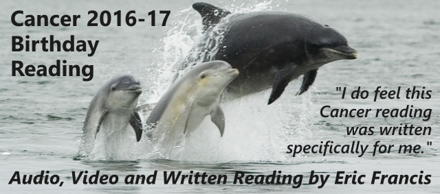 Bottlenose_dolphin_banner-640