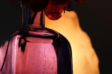 Dahlia, blue vase  and salt lamp; photo by Amanda Painter.