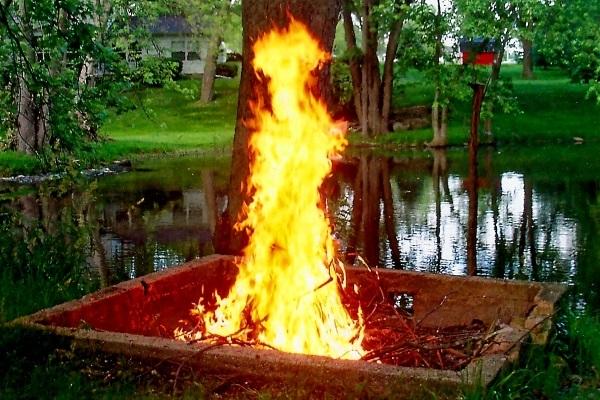 Fire-Woman-LadyDragonflyCC-600