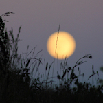 2016 Capricorn Full Moon; photo by Amanda Painter.
