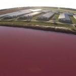 SEG-Hog-Farm-Drone