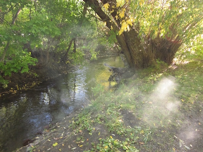 Prayer Creek; photo by Steve Guettermann.