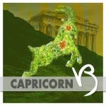 capricorn-2019