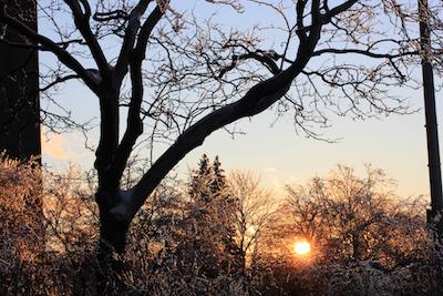 Sun setting the ice alight on Franklin St., Portland, Maine. Photo by Amanda Painter.