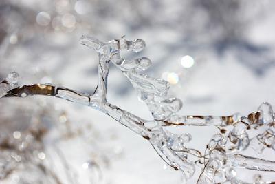 Ice dancing; photo by Amanda Painter.